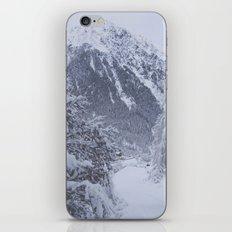 winter1 iPhone & iPod Skin