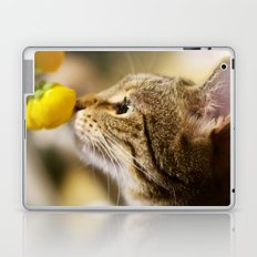 Tabby and the Flower Laptop & iPad Skin
