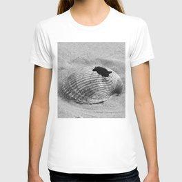 broken shell, black and white T-shirt