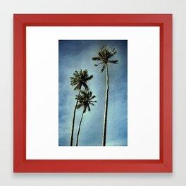 3 Palms Framed Art Print