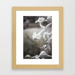 Frosted Flowers Framed Art Print