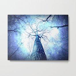Winter's Coming : Wintry Trees Galaxy Skies Metal Print