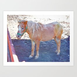 Horse by the fence 3 Art Print