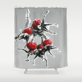 Rose hips in hoarfrost Shower Curtain