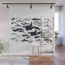 Dolphin diversity Wall Mural