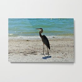 Morna's Legacy Metal Print