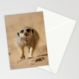 Little cheeky meerkat Stationery Cards