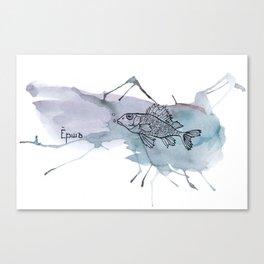 fish/ruff Canvas Print