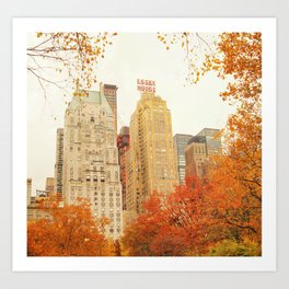Autumn - Central Park - Fall Foliage - New York City Art Print