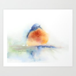 Elusive Bluebird Art Print