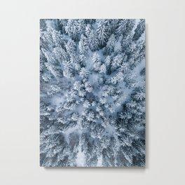 Winter Pine Forest Metal Print