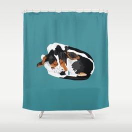 Folsom Shower Curtain