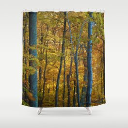 The Forrest in Autumn Shower Curtain