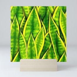 Sansevieria Trifasciata Laurentii Pattern Mini Art Print