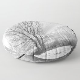 Young and old poplars. Foggy morning. Granada Spain Floor Pillow