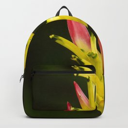 Colorful and Vibrant Hawaiian Tropical Wildflower Backpack