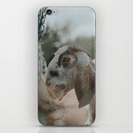 Abigail iPhone Skin