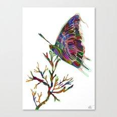 Enso Canvas Print