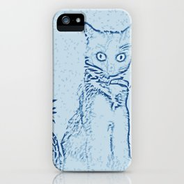 The Cat and the Pineapple - in Blue iPhone Case
