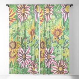 Gazanias Sheer Curtain