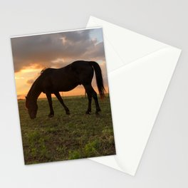 Mustang Magic Stationery Cards