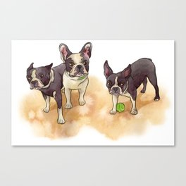 Bubba, Spanky & Figgy Canvas Print