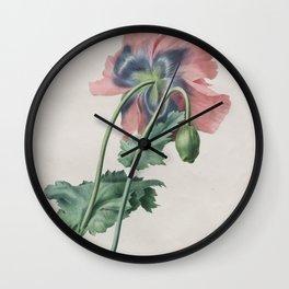 Vintage llustration - Medicinal Plant No 2 Wall Clock