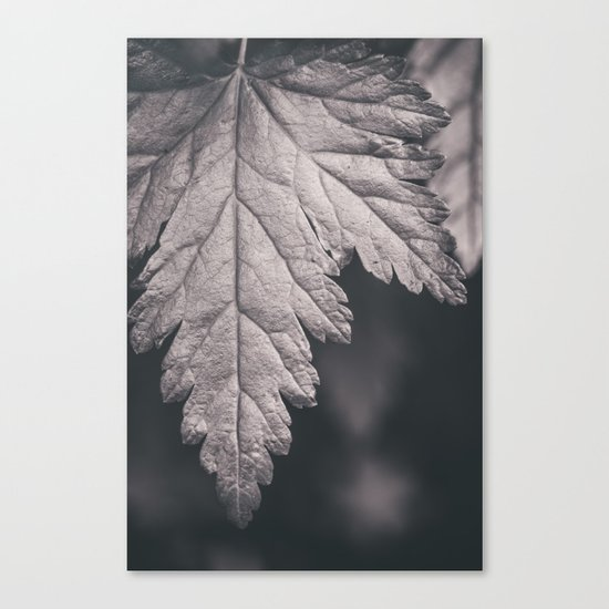 Black and White Forest Leaf Canvas Print