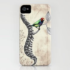 Chloebia Gouldiae iPhone (4, 4s) Slim Case