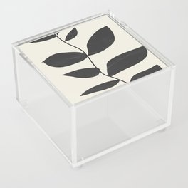 minimal plant Acrylic Box