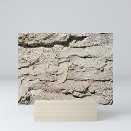 Barn Stone Wall Mini Art Print