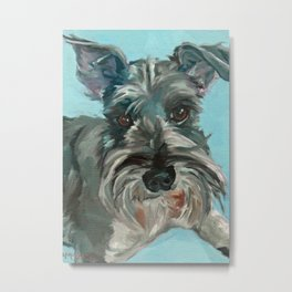 Schnauzer Dog Portrait Metal Print
