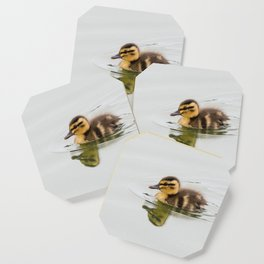 Duckling swimming Coaster