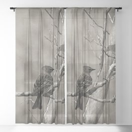 The Quest:  Black and White Bird Antiqued Sheer Curtain
