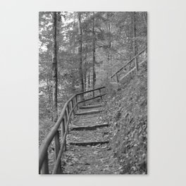 Wooden stairs, black and white photography Canvas Print