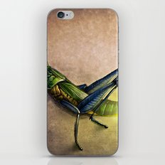 The Firefly and the Grasshopper iPhone & iPod Skin