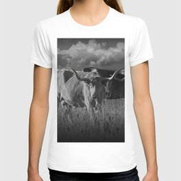 Texas Longhorn Steers under a Cloudy Sky in Black & White T-shirt