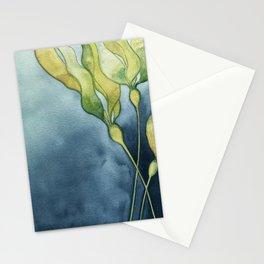 Bull Kelp Watercolor Stationery Cards