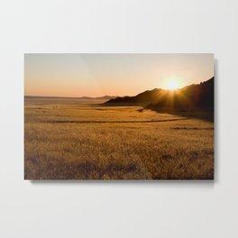 Namib Naukluft Park Metal Print