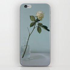 A Single Flower iPhone & iPod Skin