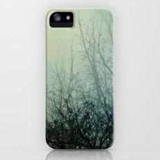 Dark Morning II iPhone (5, 5s) Slim Case