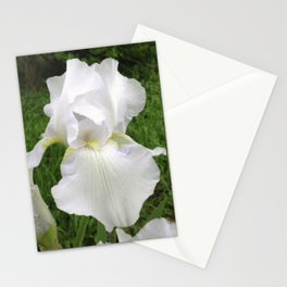 The Purity Of A Spring Time Iris Stationery Cards