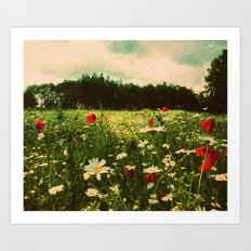 Poppies in Pilling Art Print