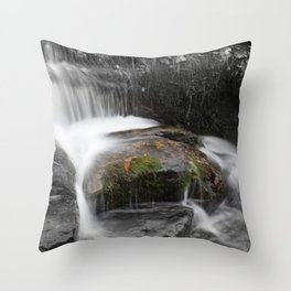 Relaxing water cascading over a moss covered rock Throw Pillow