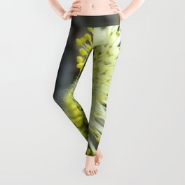 Pussy Willow - Leggings