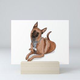 Kella, the Belgian Malinois in Blue Mini Art Print
