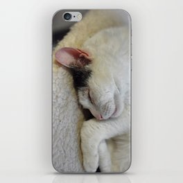 Cute Kitty Snoozes Softly iPhone Skin