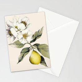 Jasmin & Bergamot Stationery Cards