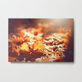 Autumn Leafs (Color) Metal Print