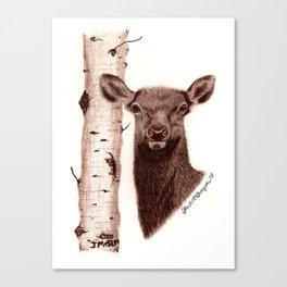 Lead Cows Know Canvas Print